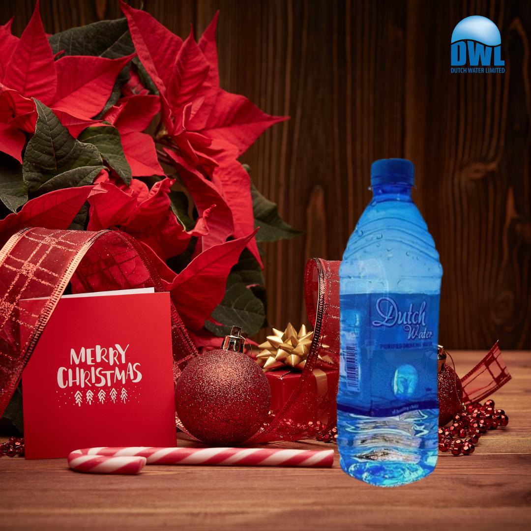 Dwl Water bottle Christmas